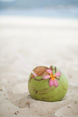 Nálepka Kokos na pláži