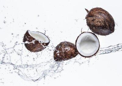 Nálepka Kokosové ořechy s stříkající vodě