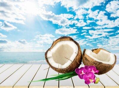Nálepka Kokosový ořech.
