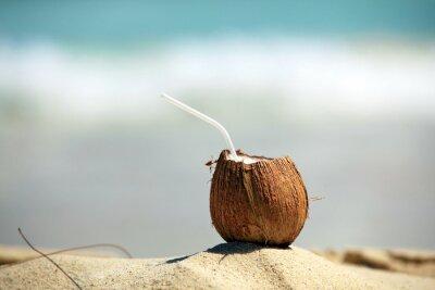 Nálepka Kokosový ořech