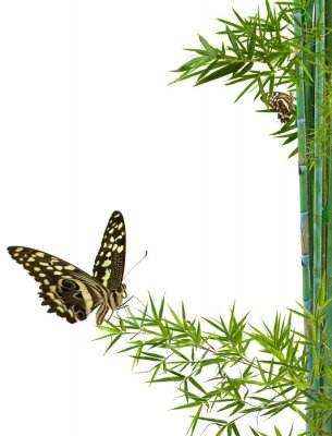 Nálepka Koncept přírody détente zen
