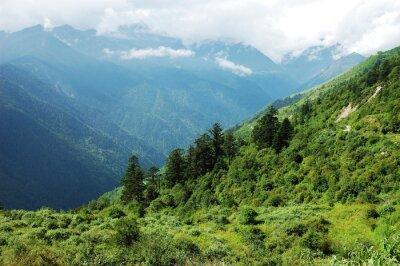 Nálepka krajina horského lesa a údolí