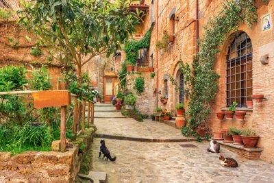 Nálepka Krásná alej ve starém městě Toskánsku