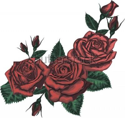 Nálepka Krásná kytice s červenou růží. Realistické vektorové umění - červené růže na bílém pozadí. - Designový prvek pro přání