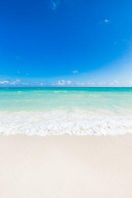 Nálepka krásné tropické moře