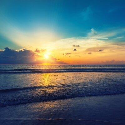 Nálepka Krásný oranžový Sun Rise