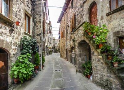 Nálepka Krásný výhled na starých tradičních domů a idylické uličce v historickém městě Vitorchiano, Viterbo, Lazio, Itálie