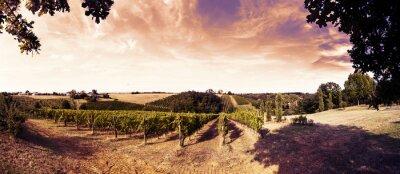 Nálepka krásný západ slunce nad vinice v Toskánsku