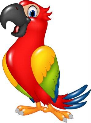 Nálepka Kreslený vtipný papoušek na bílém pozadí