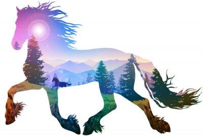Nálepka kůň