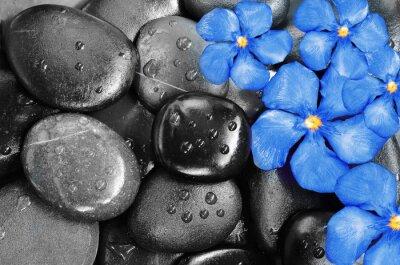 Nálepka Květiny a kameny