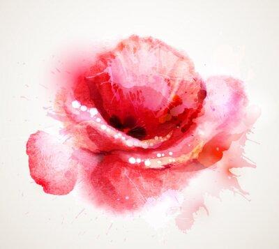 Nálepka Kvetoucí červený mák