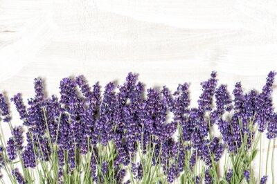 Nálepka Květy levandule na bílém dřevěném textury pozadí