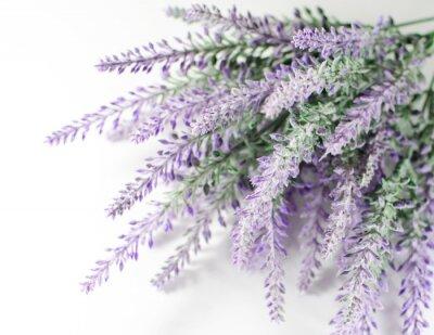 Nálepka Lavender větev