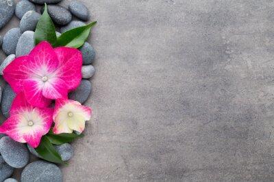 Nálepka Lázně kameny a květiny, na šedém pozadí.