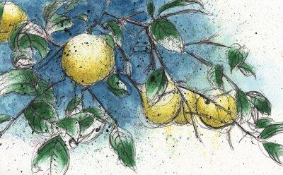Nálepka Lemon větve stromu