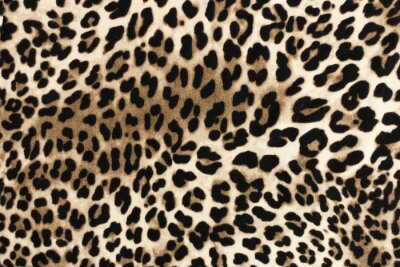Nálepka Leopardí fablická textura. Módní textilní pozadí.