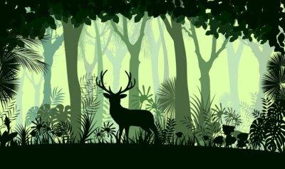 Nálepka Lesní pozadí s volně žijících jelenovitých stromů