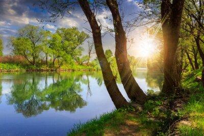 Nálepka lesní řeka s kameny a trávou při západu slunce