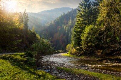 Nálepka lesní řeka v horách