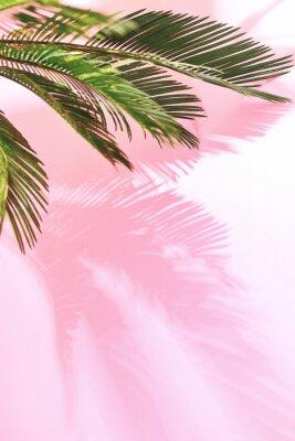 Nálepka Letní tropické pastelové pozadí s palmou