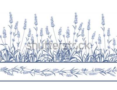 Nálepka Levandule bezešvé rámeček. Kytice levandule na bílém pozadí. Vektorové ilustrace.