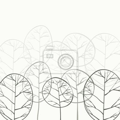 listnatý les v mlze