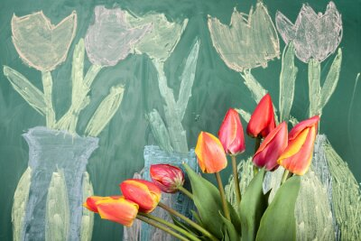 Nálepka Live flowers and children's chalk drawing of tulips on a blackboard