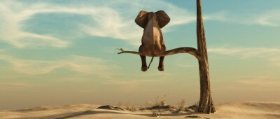 Nálepka Lonely elephant on tree