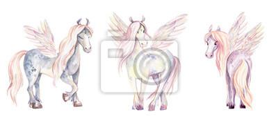 Magic Pegasuses. Akvarel ilustrace, krásné izolované pon