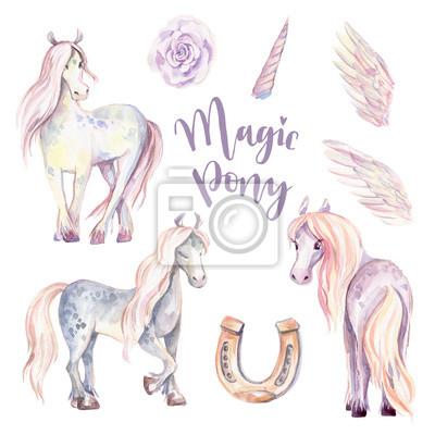 Magic Pony, Pegasus, sada Unicorn. Akvarel ilustrace, kráska