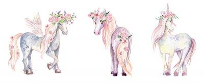 Nálepka Magic Unicorn, Pegasus a Pony. Akvarel ilustrace, krásky