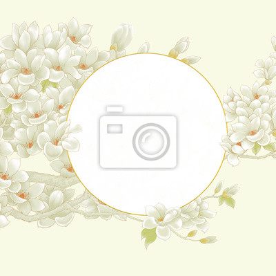 Magnolia. Flowers. Flowering of trees. Spring.Magnolia flower frame drawing illustration for invitation and greeting card design