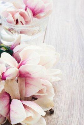 Nálepka magnólie květiny
