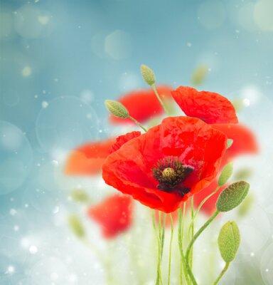 Nálepka Mák květiny