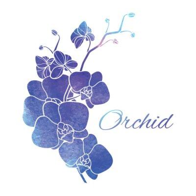 Nálepka Malované Purple Akvarel Orchids