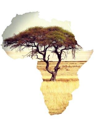 Nálepka Mapa Afriky kontinent koncepce s akácie