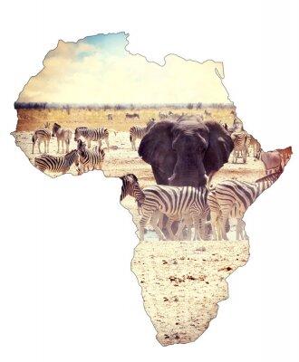 Nálepka Mapa Afriky kontinent pojetí, safari na napajedlo se slony
