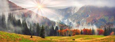 Nálepka Misty podzimní Zakarpatí