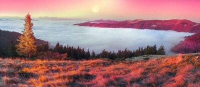 Nálepka Mlha na podzim