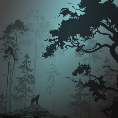 Nálepka mlhavo krajina s siluetou lesa, borovic a vlk, měsíčku