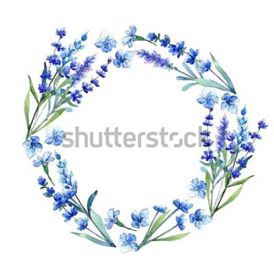 Nálepka Modrý levandule. Květinový botanický květ. Silný jarní list wildflower rám ve stylu akvarelu. Aquarelle wildflower pro pozadí, textury, obal vzor, rám nebo ohraničení.