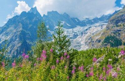 Nálepka Mont Blanc Massive Krajina