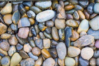 Nálepka mořské kameny