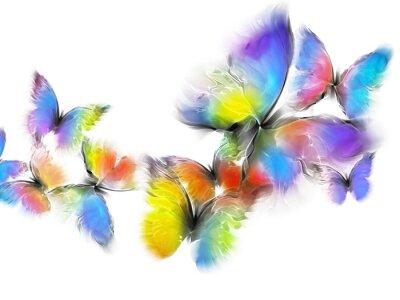Nálepka motýli
