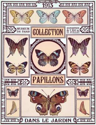 Nálepka Motýli kolekce