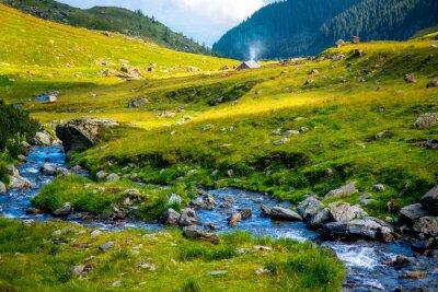 Nálepka Mountain river