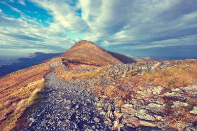 Nálepka Mountain Trail