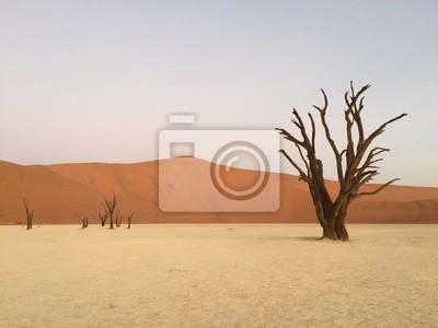 Nálepka Mrtvý Vlei, Namibie