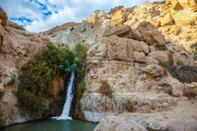 Nálepka Národní park a rezervy Ein Gedi, Izrael